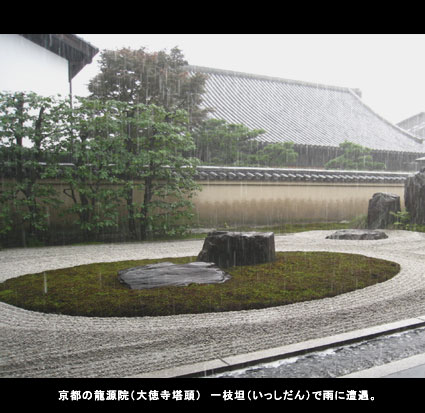 京都の龍源院(大徳寺塔頭) 一枝坦(いっしだん)で雨に遭遇。