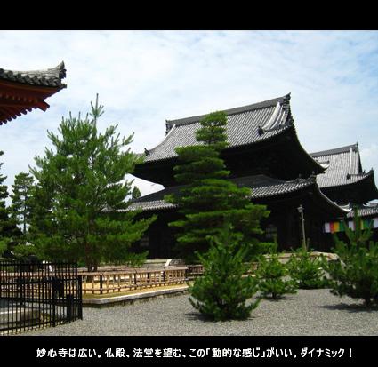 妙心寺は広い。仏殿、法堂を望む、この「動的な感じ」がいい。ダイナミック!