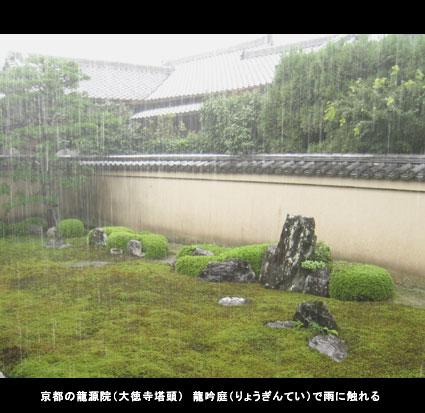 京都の龍源院(大徳寺塔頭) 龍吟庭(りょうぎんてい)で雨に触れる。