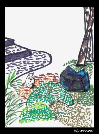 京都ポストカード:猫と緑