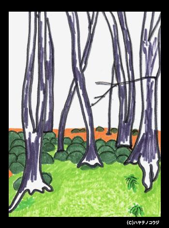 京都ポストカード:庭の木々